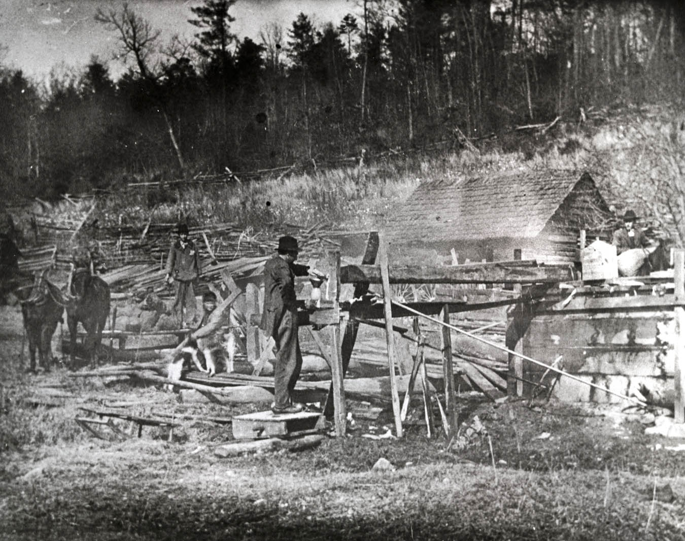 The Saloon and Anarchy: Prohibition in Tennessee, Additional